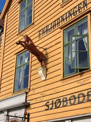 Eenhoorn in Bergen