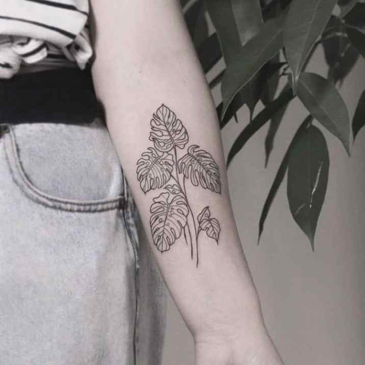 Monstera tattoo