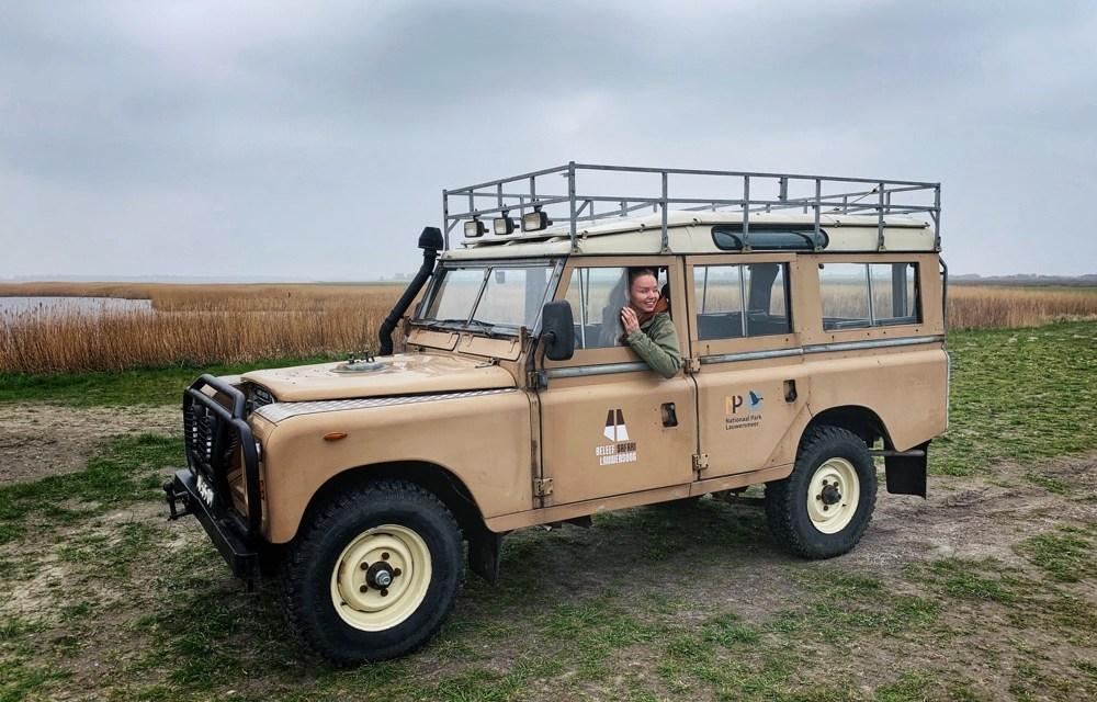 Friesland/Groningen tip: safari in Nationaal Park Lauwersmeer