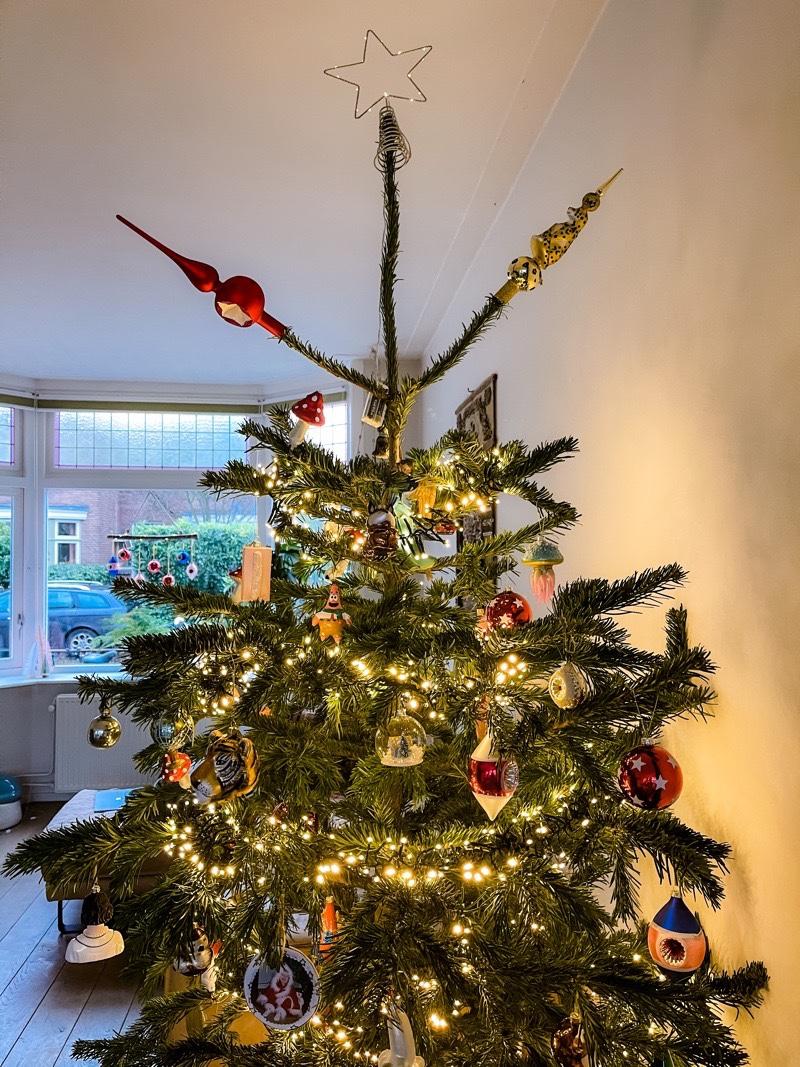kerstboom 2020