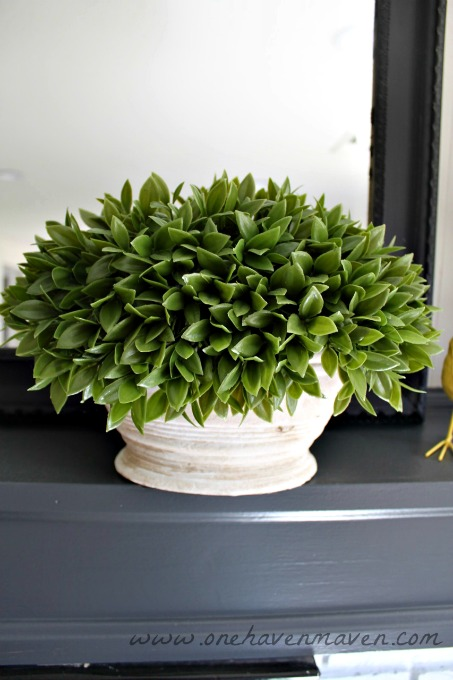 faux-boxwood