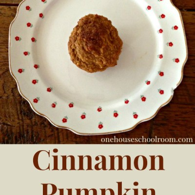 Cinnamon Pumpkin Muffins- A Fall Treat