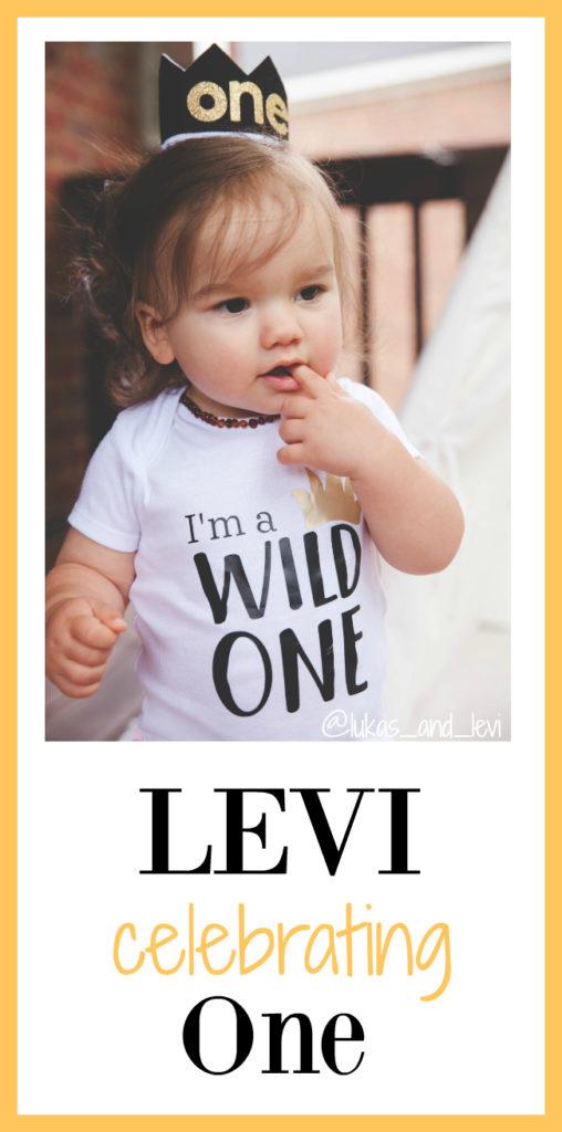 Levi- One Year Birthday Celebration