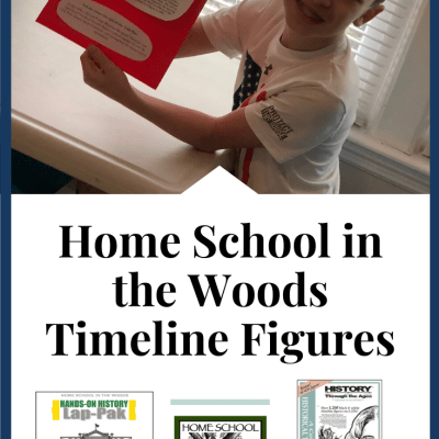 Home School in the Woods Review