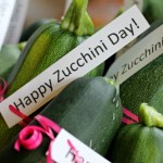 Mavis Garden Blog – Happy National Zucchini Day!