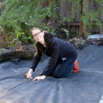 Ask Mavis – Landscape Fabric, Growing Citrus, and How to Console a Friend