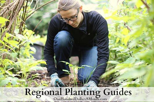 regional planting guides