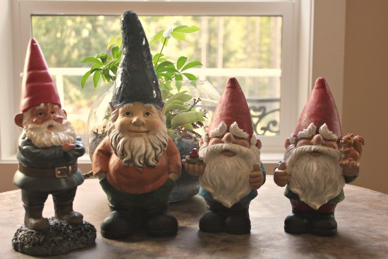 Send in the gnomes where did they all come from for Olive garden cape girardeau missouri