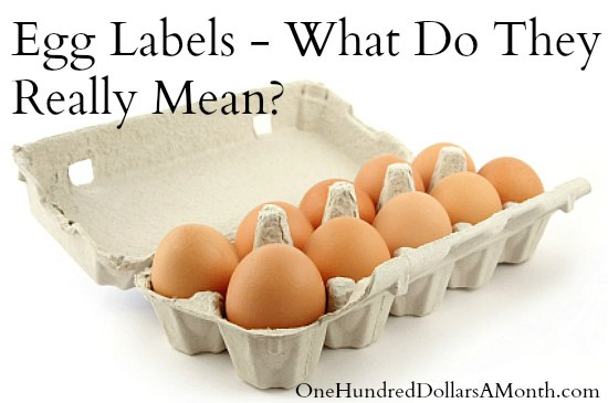 Egg Labels - What Do They Really Mean