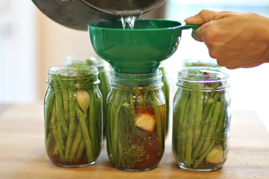 dilly beans canning recipe dill