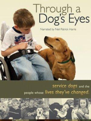 through a dog's eyes
