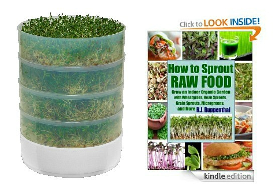 seed sprouter how to sprout seeds