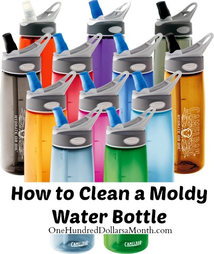Water Bottle Youtube: How To Clean A Moldy Water Bottle