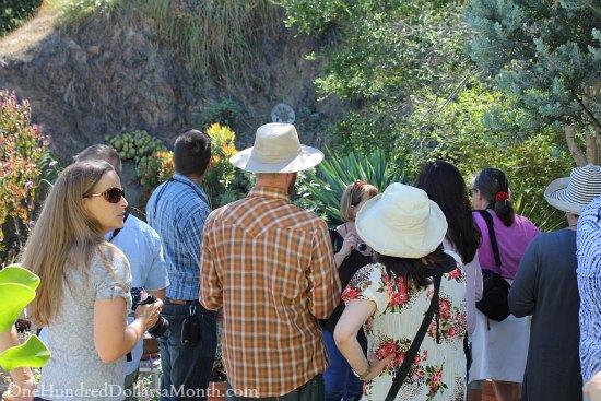 canyon garden tour