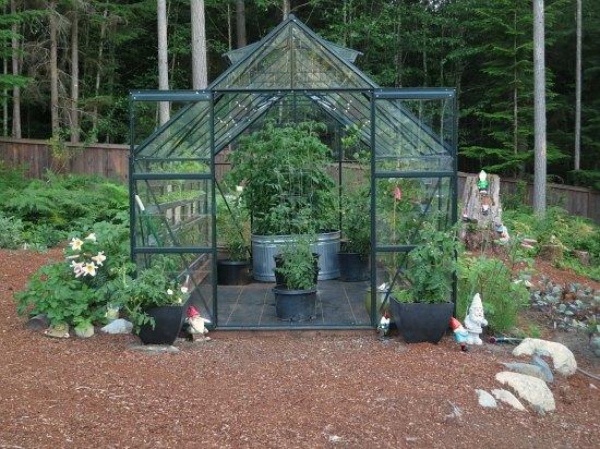 english glass greenhouse