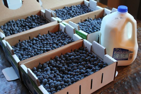 fred meyer blueberries