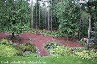 Wooded Backyard Gardening Ideas Photograph
