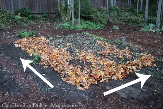 Lasagna Gardening - Adding Another Layer of Leaves