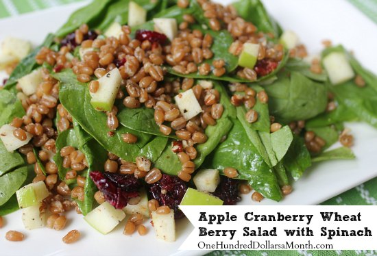 Apple Cranberry Wheat Berry Salad with Spinach