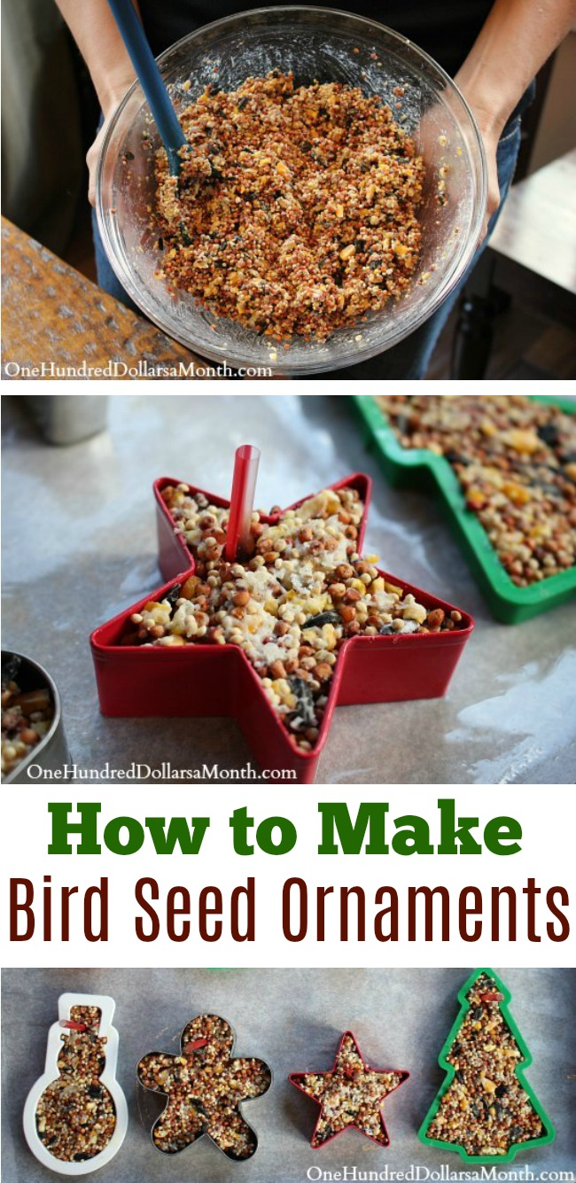 Easy Christmas Crafts - Bird Seed Ornaments - One Hundred ...