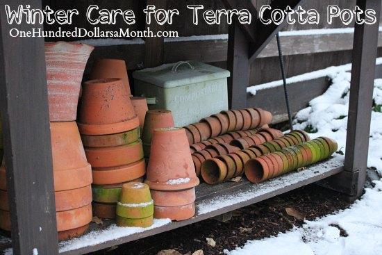 Winter Care for Terra Cotta Pots