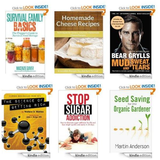 free kindle books