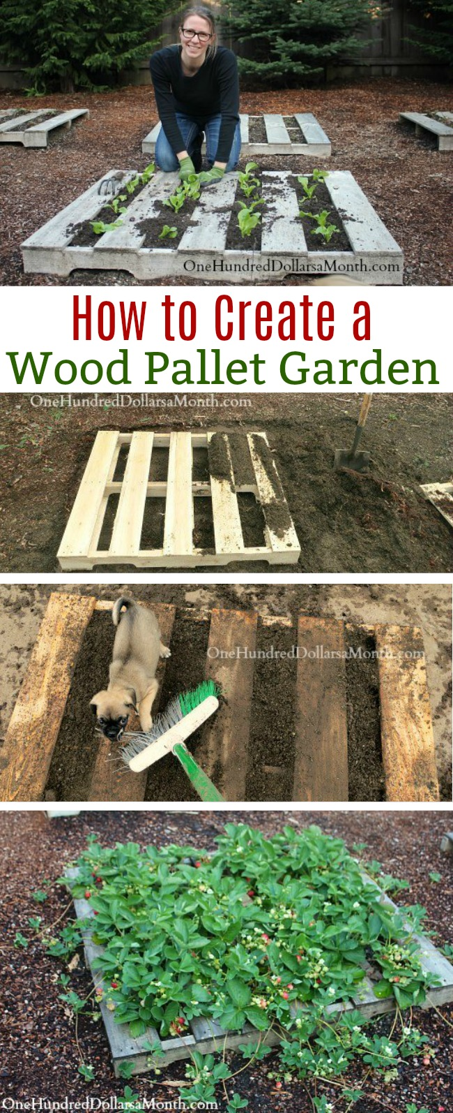 Pallet Gardening - How to Create a Wood Pallet Garden ...