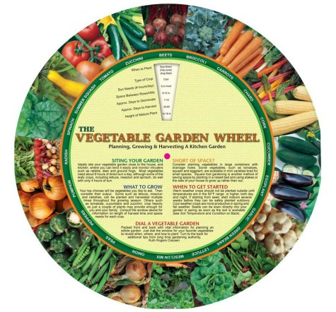 vegetable-wheel