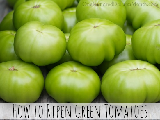 How to Ripen Green Tomatoes