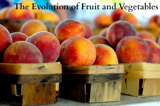 The Evolution of Fruit and Vegetables