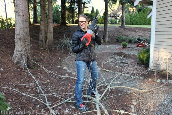 mavis butterfield garden reciprocating saw