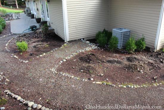 future herb garden