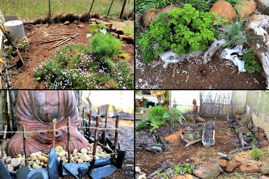 Lisa garden 11