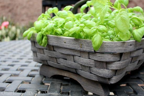 peterboro garden basket