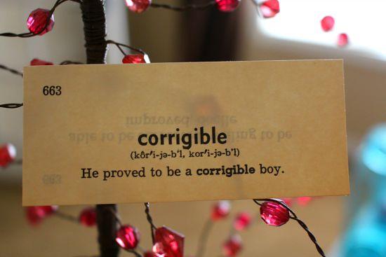 corrigible