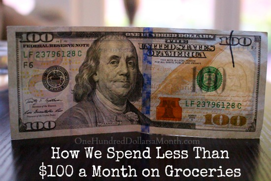How We Spend Less Than $100 a Month on Groceries
