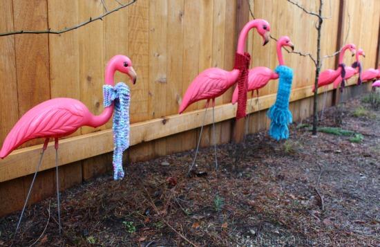 pink flamingo scarf