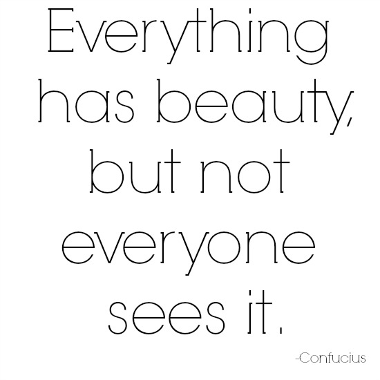 quotes -everything has beauty
