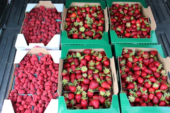 fresh berries spooner farms