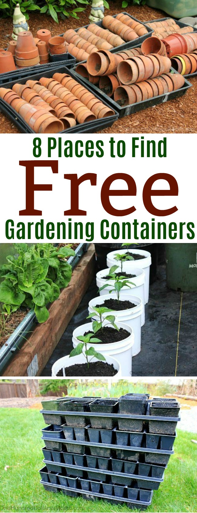 8 places to find free gardening containers - one hundred