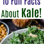 10 Fun Facts About Kale!