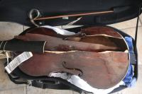 La viola del 600 di Myrna Herzog distrutta