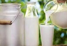 lifestyle-milk