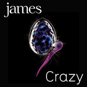 Single: Crazy