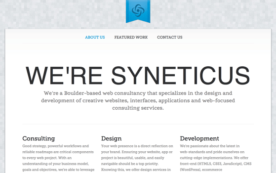 syneticus one page site