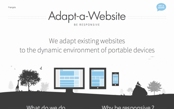 Adapt-a-Website Responsive website
