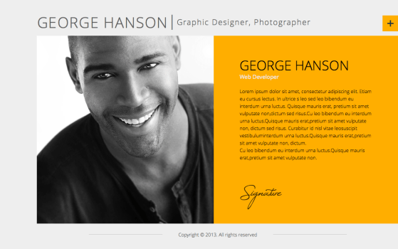 Profession - One Page CV Responsive Theme