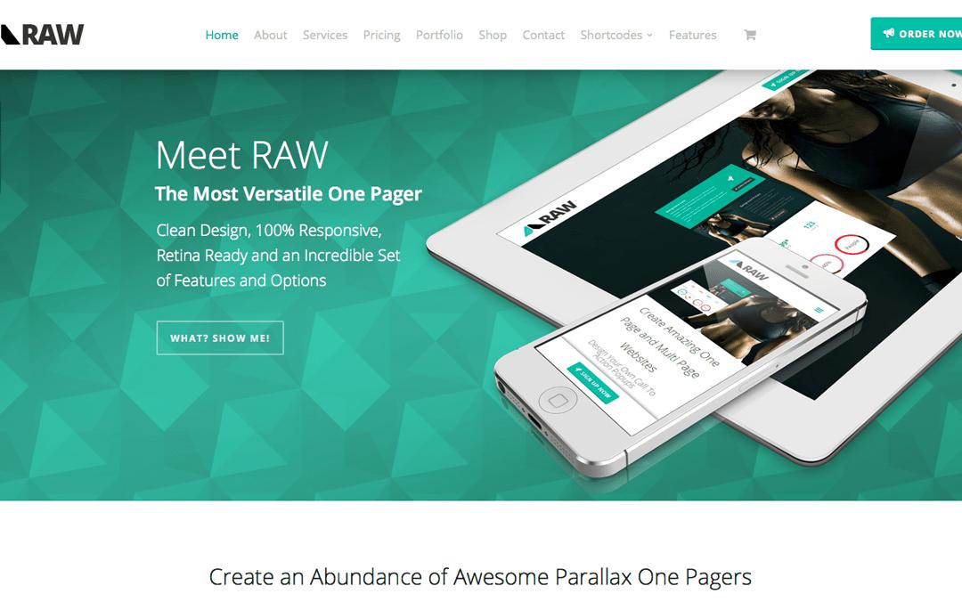 Raw one page wordpress