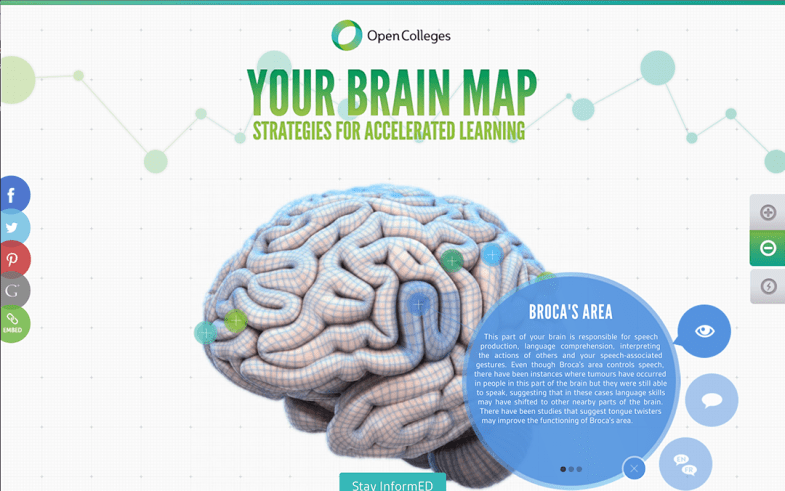 Your Brain Map
