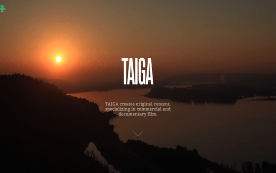 we are taiga one page websites